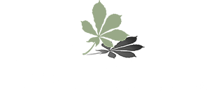 Loch Lomond Guesthouse & Lodges